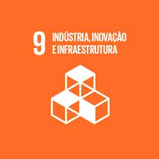 Indústria; inovação e infraestrutura