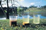 Zero Efluentes: Fertirrigação Em Gravataí
